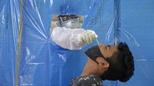 Testning i Hyderabad, Indien på måndag morgon. Indien ligger trea i världen vad gäller antal bekräftade fall av covid-19, men enlig den officiella statistiken ser dödligheten i sjukdomen lägre ut än i en del andra länder.