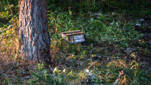 En söndrig postlåda ligger i en skogsdunge