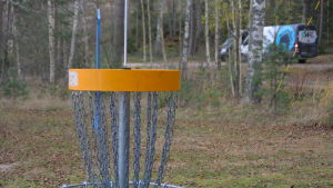 Korg att kasta frisbee i
