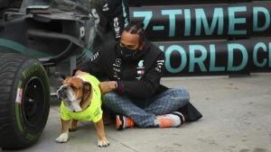Lewis Hamiltons hund fick också bevittna brittens stora dag.