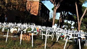 En mngd vita kors på en gräsmatta framför några träd och en byggnad.