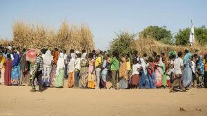 Bild på människor i färgglada kläder som står på rad i ökenlandskap.