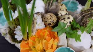 Ett blomsterarrangemang gjort i ett äggfack med tomma äggskal som små vaser. Arrangemanget är dekorerat med fjärdrar, vaktelägg, mossa, tulpaner och narcisser.