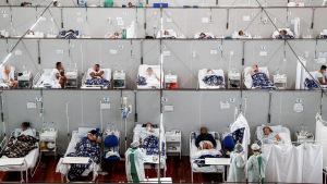 Radvis med coronapatienter på fältsjukhus i Brasilien.