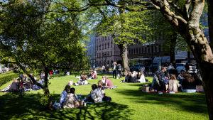 Människor sitter i en park i Helsingfors och njuter av solen.