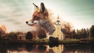 Illustration av en räv över Nykarleby