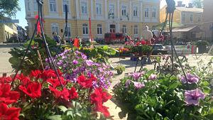 Blommor på Ekenäs torg, 25 maj.