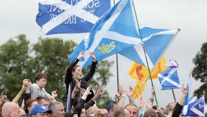En arkivbild från september 2014 med anhängare av ett självständigt Skottland som viftar med skotska flaggan som är blå med ett vitt kors.