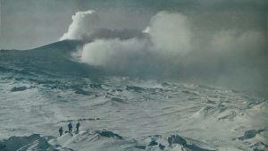 Bild från 1912-13 på vulkanen Erebus