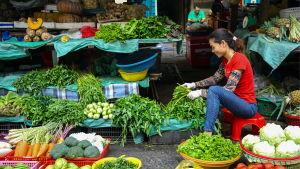 Kvinna i grönsakshandel i Ho Chi Minh i Vietnam