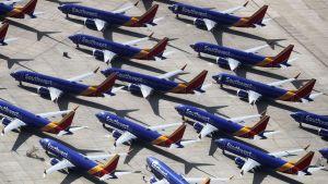 Flera Boeing 737 MAX-plan står på södra Kaliforniens logistikflygplats.