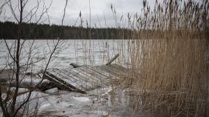 Högt vattenstånd i den österbottniska skärgården. I förgrunden syns en omkullkastad brygga.