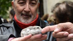 Hamsterägaren Carlos, 64, tog med sig sin hamster Bolita till kyrkan så att den skulle bli välsignad.