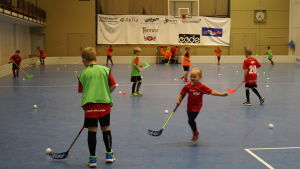 Jeppis floorball club.