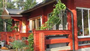 Ett rödmålat stockhus i solsken. Tidig höst.