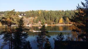 En motorbåt kör förbi sommarstugor och höstgula träd.