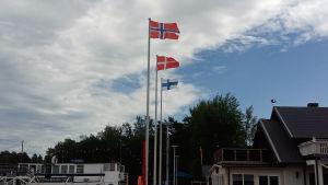 Norges, Danmarks och Finlands flaggor vajar i vinden vid en hamn.