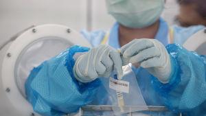 En person i skyddsutrustning håller i ett coronavirus-provsvar.