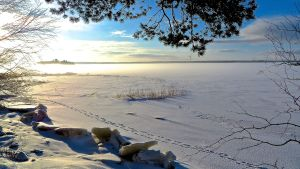 Södra stadsfjärden i Vasa.