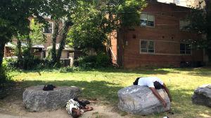 Två hemlösa sover under en het eftermiddag i Washington DC, USA.