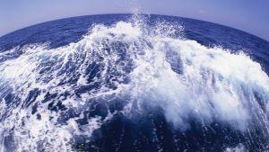 En bild av havet taget med vidvinkelobjektiv. I förgrunden en våg och i bakgrunden horisonten.