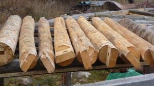 en rad med stockar som ska användas i byggandet av en paviljong.