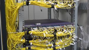 Många, gula. spagettiliknande band i knippen i ett el-skåp.