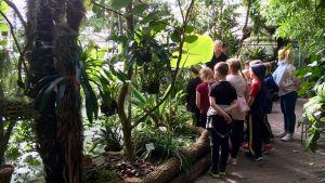 En grupp med skolbarn lyssnar på en man vid en vattendamm.