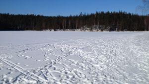 fotspår i snön på isen