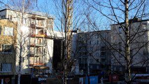 Uusia kerrostaloja rakennetaan Joensuun keskustassa.