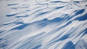 Tuuli on muodostanut lumeen hienoja kuvioita