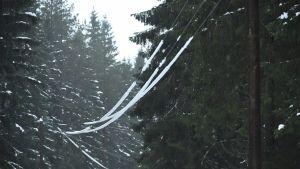 Tung snö på elledningar.