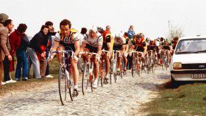 Paris-Roubaix 1982.