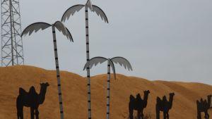 Kotkassa peltikamelit käyskentelevät sahanpuruaavikolla