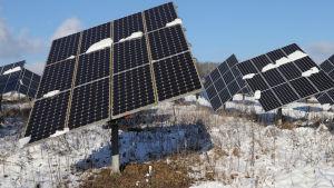 Solpaneler på ett av snö täckt fält i Tyskland