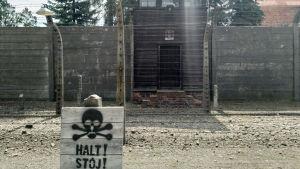 I koncentrationslägret Auschwitz I kontrolleras alla besökare