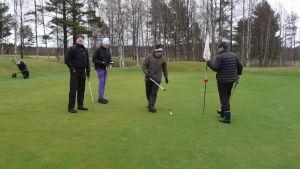 Tapio Järvinen, Svante Nyholm, Kari Collin och Jukka Niemelä spelar golf på en grön gräsmatta i Hangö. Det exceptionella är att det här sker i början av januari 2018.