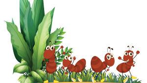 Fyra tecknade myror dansar på en tecknad blomkruka.