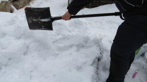 En person i halvfigur som gräver fram en odlingslåda som ligger bragraven i snö.