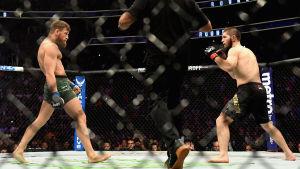 Conor McGregor mot Khabib Nurmagomedov.