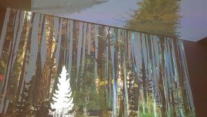 Museon seinälle ja kattoon projisoitu digitaalinen metsä