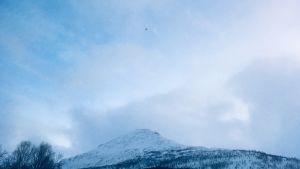 En helikopter syns i luften i Tamokdalen på väg på sökuppdrag efter de försvunna finländarna och en svenska.