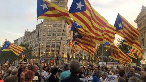 Mielenosoituksista on tullut arkipäivää Kataloniassa