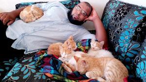 David kissojensa kanssa