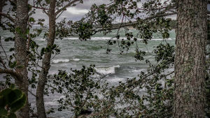 Ett stormande hav.