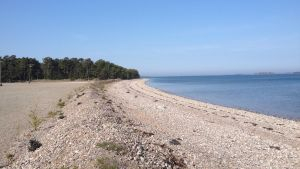 Tulluddens norra strand i Hangö