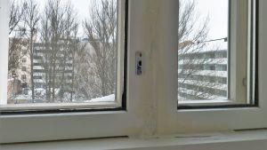 Belén Weckströms sovrumsfönster.