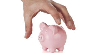 En hand som håller på att ta en rosa spargris.