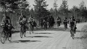 Jääkärit valmistautuvat vastaiskuun. Summan lohko kesäkuun 18. 1944
