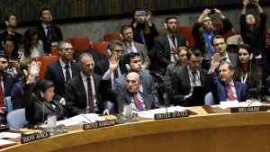 FN:s säkerhetsråds möte 28.2.2019.